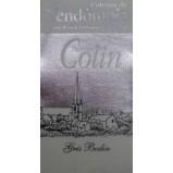 GRIS BODIN 2015. PATRICE COLIN